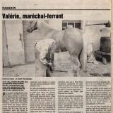 Le Dauphiné libéré - 29 mai 1995