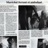 Le Paysan savoyard - 23 juin 1995