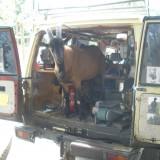 Bouc dans le véhicule de maréchalerie